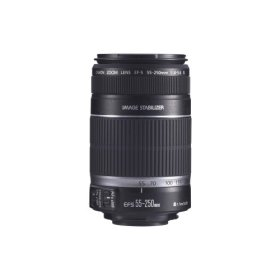 canon-55-250-f40-56-is