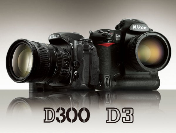 Although the D300 employs the smaller DX sensor, it shares a great deal of technology with the full-frame D3