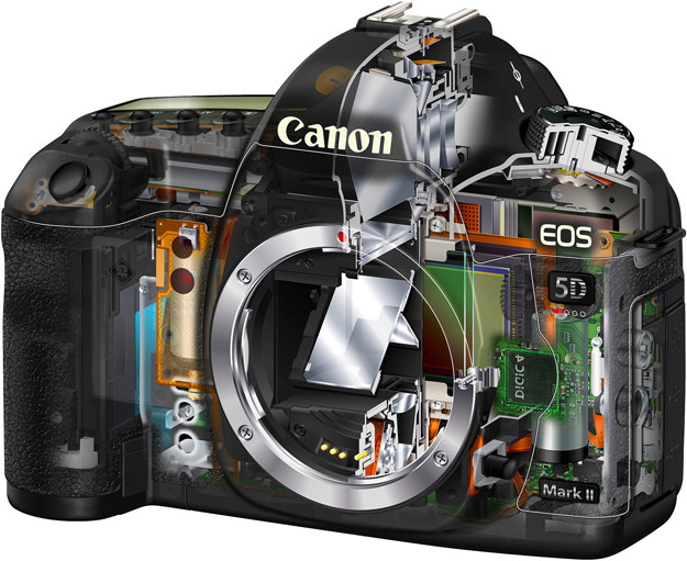 A digital camera is similar to a computer in some aspects so its operating software -- or firmware -- can be updated. The process no longer requires a trip to a service centre as it did in the past, making it easy and quick to improve functionality.